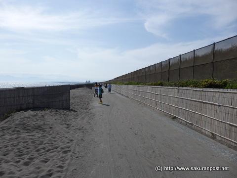 海岸線沿いのサイクリングロード