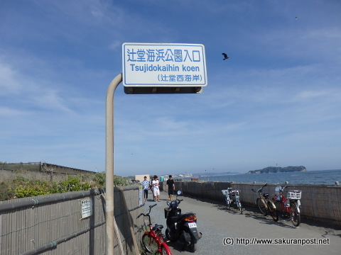 辻堂海浜公園入口