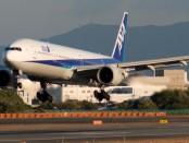 飛行機と新幹線